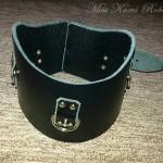 collars-2
